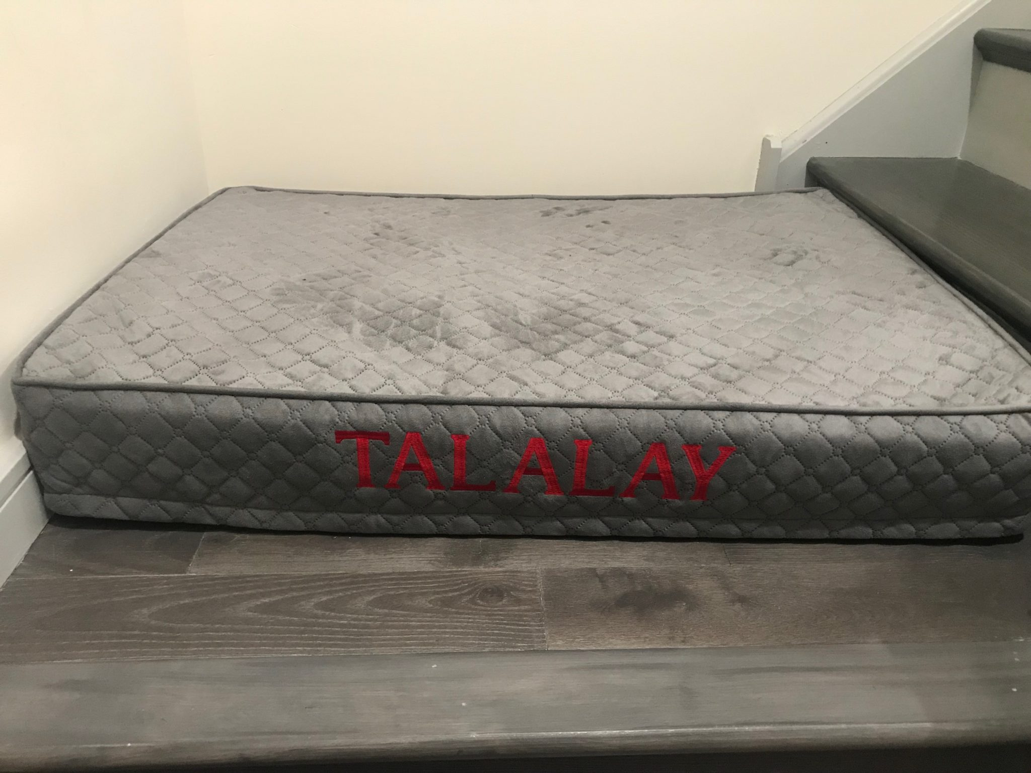 Talalay Living Barkalay Dog Bed Review