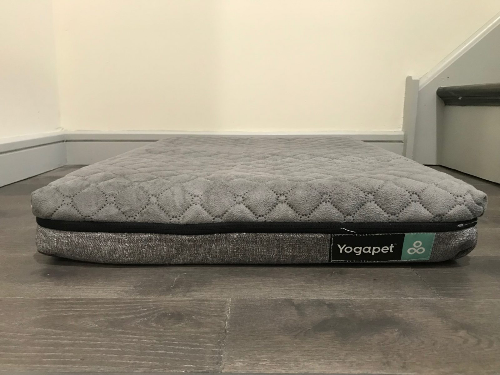 YogaPet Bed Review