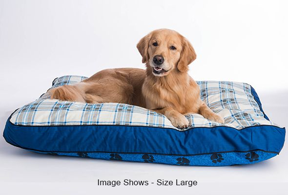 MyPillow large size dog bed in blue trim shown with a golden retriever model